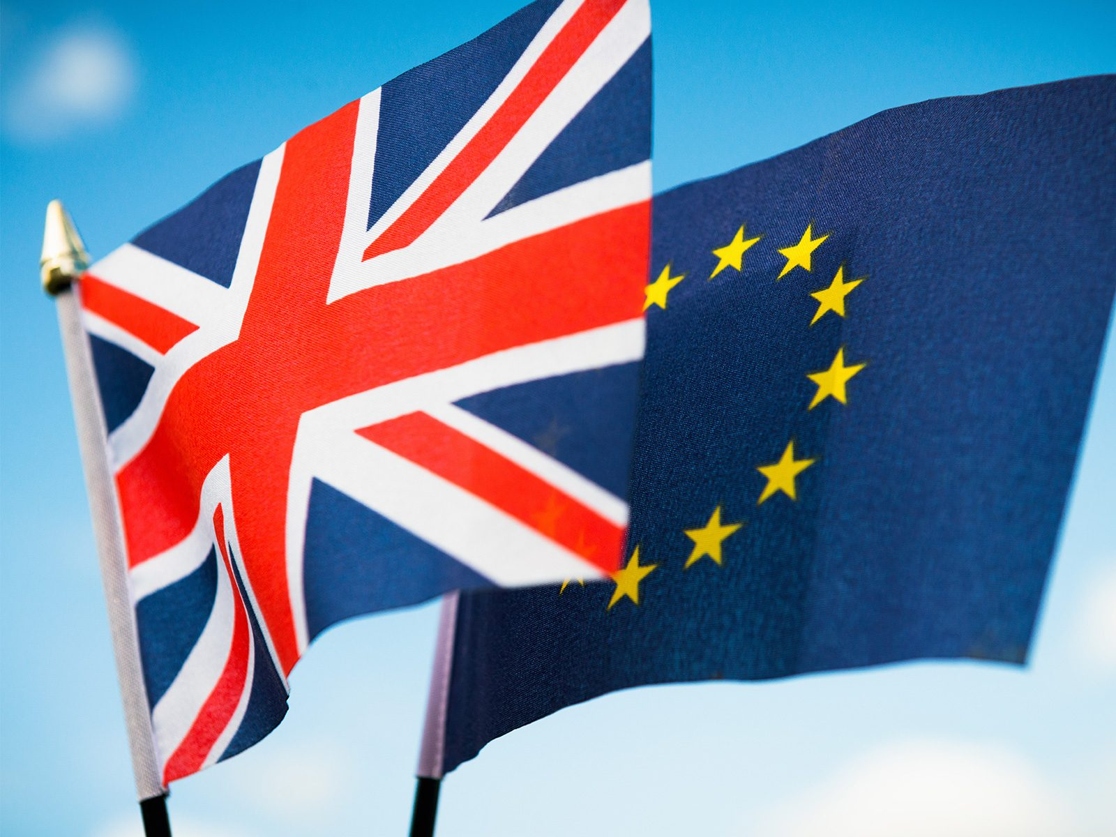 The Brexit Effect and the Importance of Diversification
