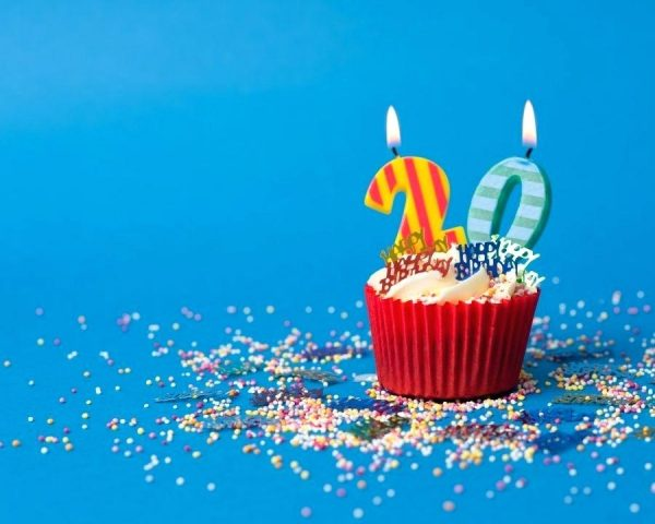 ISA's 20th Birthday Part 1 – The History of the ISA